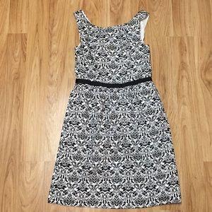 Loft dress! Never worn